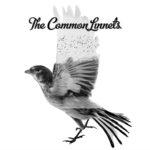 ilse_deLange_waylon_-_the_common_linnets